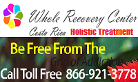 Whole Recovery Costa Rica